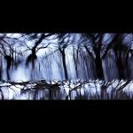 Tides_Front_1400er